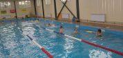 бассейн сафари